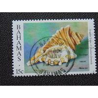Багамы 1996 г. Раковина.