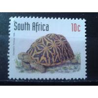 Южная Африка 1998 Черепаха**