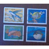 Рыбы. Вьетнам. Дата выпуска: 1984-04-25