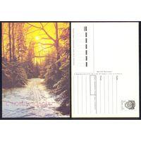 1990 СССР ДМПК С Новым годом лес солнце лыжня