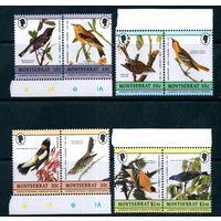 Фауна Птицы Монтсеррат 1985 год чистая серия из 8 марок в парах