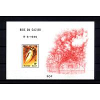 1981 Бельгия. 25 лет со дня трагедии на шахте Буа-дю-Казье. Блок