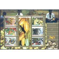Гана 1998 Какао, МЛ