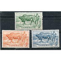 Камерун. Пастух с быком (зе6у)