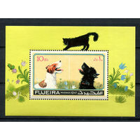 Фуджейра - 1971 - Кошки и собаки - [Mi. bl. 82] - 1 блок. MNH.