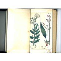 R!R!R! Ионсон, Я. И.Правила оценки земель 1840 г. 120 раскрашенных от руки гравюр на меди с изображением редких растений дико произрастающих в России.