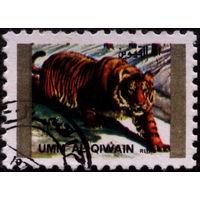 Кошки. Умм-эль-Кайвайн 1973. Тигр. Марка из серии. Гаш.