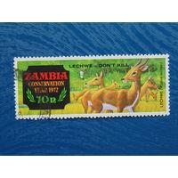 Замбия 1972г. Фауна.