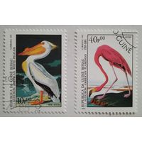 Гвинея-Бисау 1985. Птицы