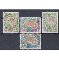 [11] Мадагаскар 1973.Фауна.Лемуры. Гашеная серия.