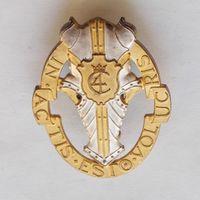 Кокарда гвардейского гусарского датского полка