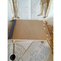 Акупунктура и массаж Восточная медицина. Самиздатовская ксерокопия нескольких книг А4 и настенный плакат