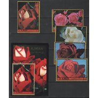 Марки ОАЭ. Аджман. Розы. 1972г.