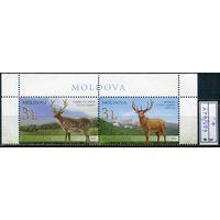 Молдова Молдавия 2008 Фауна Олени Совм. с Казахстаном **