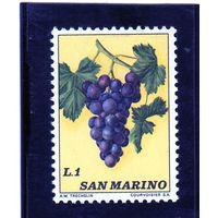 Сан-Марино. Ми-1031. Виноград (Vitis vinifera). Серия: фрукты. 1973.