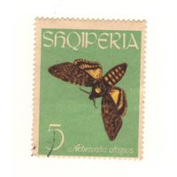Албания. Бабочка. 1 марка