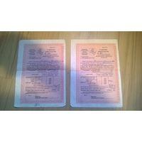 Страховое Свидетельство об обязательном страховании имущества, Беларусь с гербом Погоня