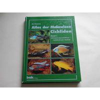Атлас малавийских цихлид, том 1, на немецком языке
