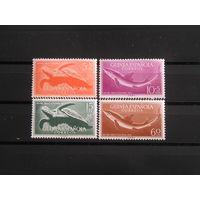 Испанская Гвинея 1954 Морская фауна  (4)
