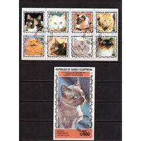 Гвинея-Экв, 8 м + 1 б , гаш., Фауна(Кошки)