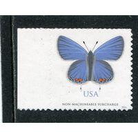 США. Бабочка. Восточный хвост голубой