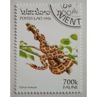 Лаос 1996. Змея