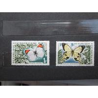 Бабочки 1963 г