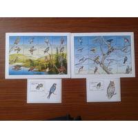 Грузия 1996 Птицы 32 марки + 2 блока полная серия