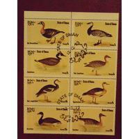 Оман 1973г. фауна Утки