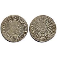 Грош 1531, Альберт Гогенцоллерн, Вариант портрета с короткой бородой. Более редкий год, R1
