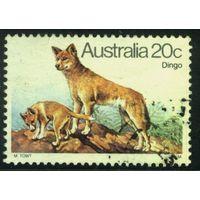 Австралия 1980 Mi# 700 (AU018) гаш.