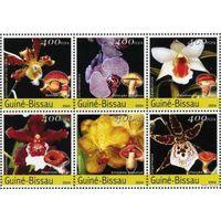 2004 Гвинея-Бисау Флора Цветы Орхидеи Грибы  MNH серия 6 марок