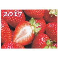 Календарик 2017 (73)