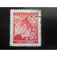 Рейх протекторат 1939 стандарт