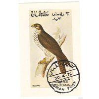 Оман 1972. Блок. Сова.
