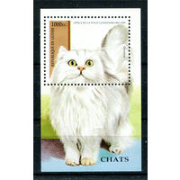 Гвинея - 1995г. - Коты - полная серия, MNH [Mi bl. 492] - 1 блок