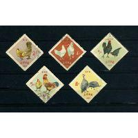 Корея 1964г. домашние птицы, 5м.