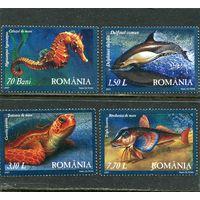 Румыния. Фауна Черного моря