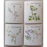Цветущие растения Юго-Восточной Ботсваны.