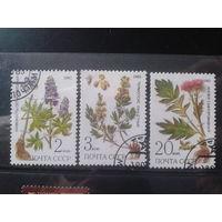 1985 Лекарственные растения