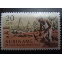 Суринам 1966 корабль