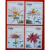 Куба. Цветы. ( 4 марки ) 1979 года.