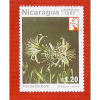 Никарагуа. Цветы. ( 1 марка ) 1982 года.