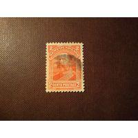 Британский Ньюфаундленд  1897 г.Король Эдуард VII .