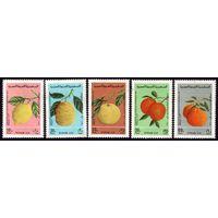 5 марок 1977 год Сирия Цитрусовые 1367-1371