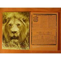 2 Шикарных каталога  илюстрированных редких книг  (5)