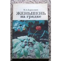 В.А.Борисевич Женьшень на грядке.