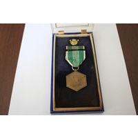 """Медаль """"За доблестую службу"""" (медаль Благодарности). США"""