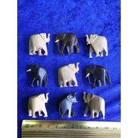 Девять слонов вместе.