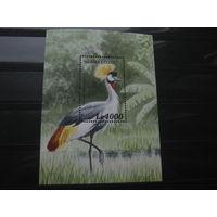 Марки - Сьерра-Леоне блок фауна птицы